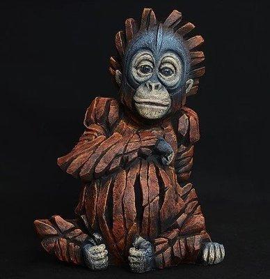 Orangutan - Baby
