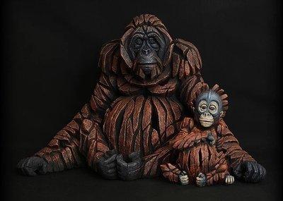 Orangutan - Family