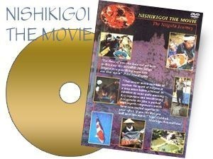 NISHIKIGOI THE MOVIE,THE NIIGATA JOURNEY