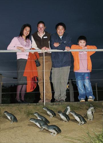 ペンギンパレードと 動物ふれあいの旅(食事なし)