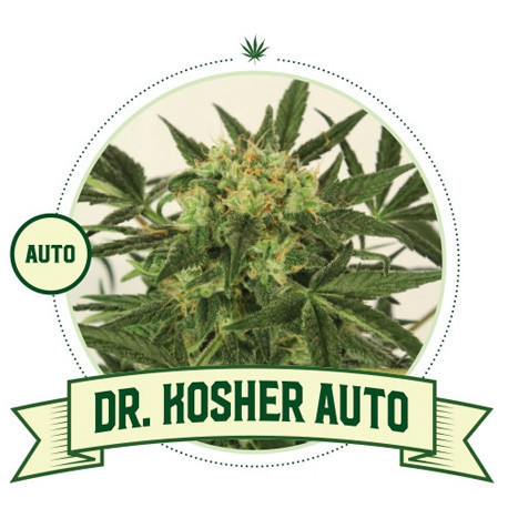 Dr Kosher Automatic