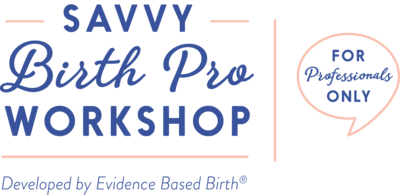 Savvy Birth Pro Workshop