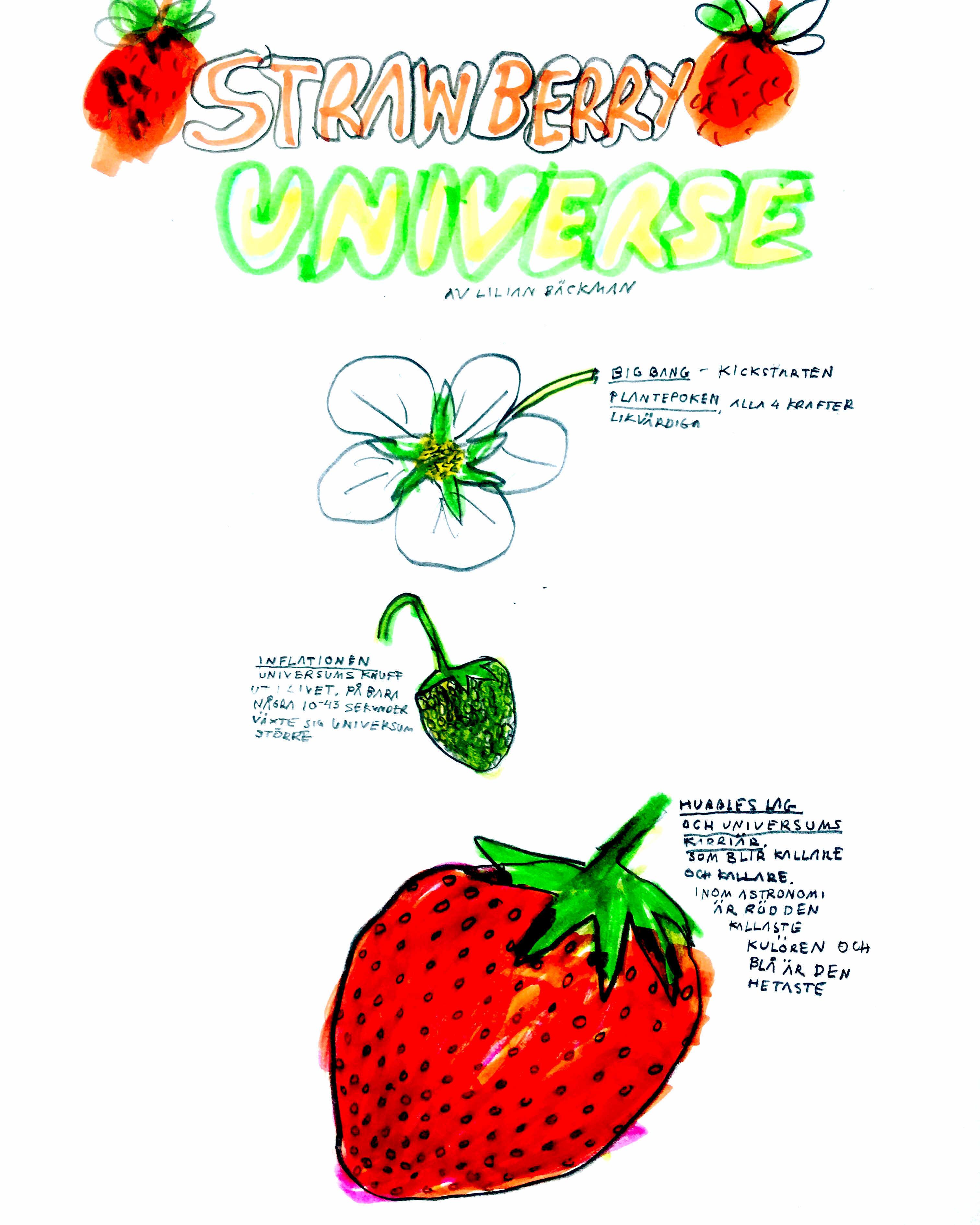 STRAWBERRY UNIVERSE 5