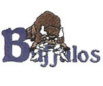 BUFFALO EMBROIDERY