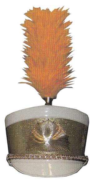 HACKLE UPRIGHT PLUME