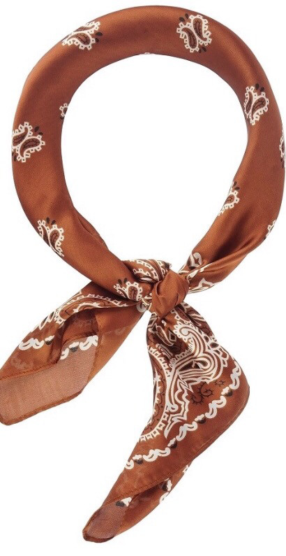 Beautiful Silk Scarf