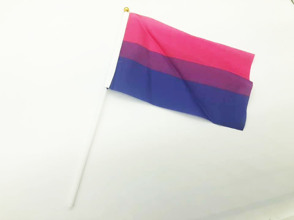LGBT Hand Flags