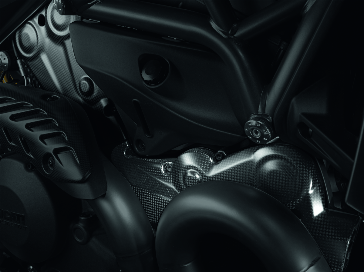 Carbon fiber belt covers.