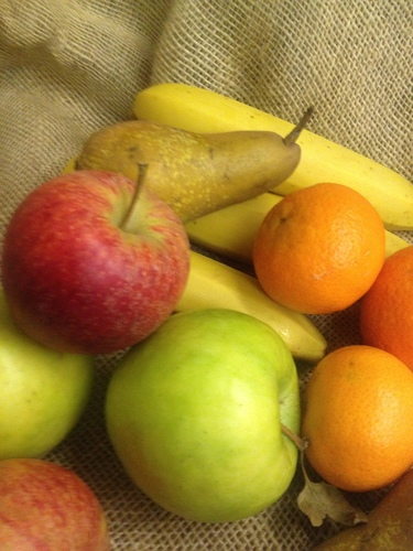 Small Fruit Box