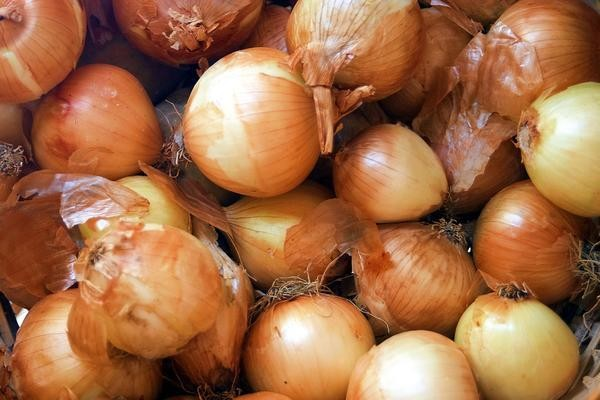 Onion Yellow 500g