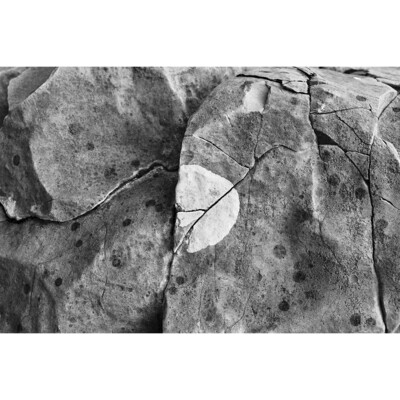 Untitled (Boulder Detail)