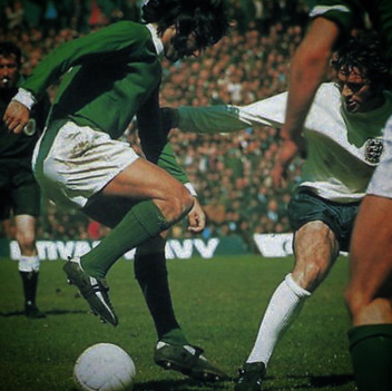 george best stylo matchmakers northern ireland