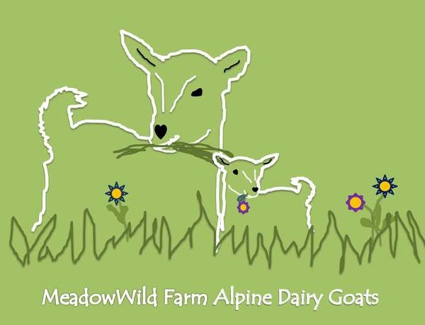 Meadowwild Farm Goats' Milk Soaps Online