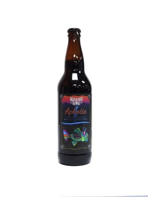Aphotic Imperial Porter By High Water Brew from San Jose, CA 22oz Single Bottle (F3-7) 2