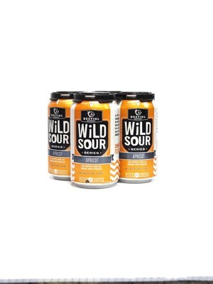 Apricot Wild Sour Ale By Destihl Brew from Illionis 12oz 4pk Can(F10-2)2