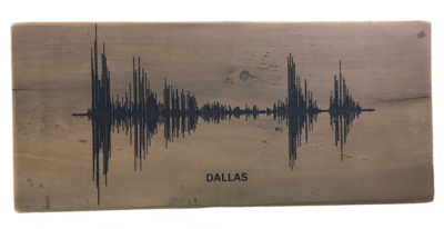 Soundwave Art Reclaimed Barn Wood Plaque