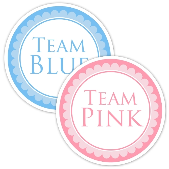 Team Pink and Team Blue Gender Reveal Party Stickers 231-stickers