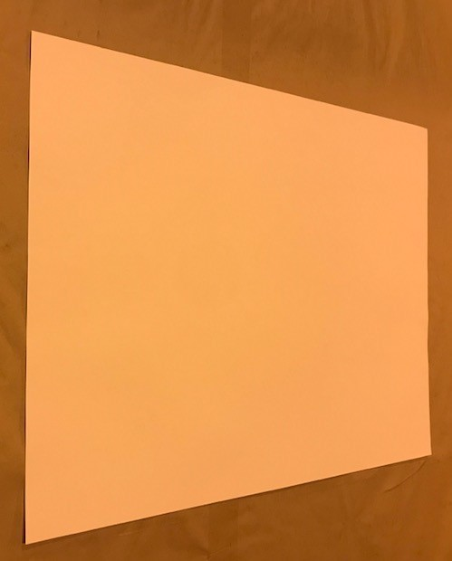 "Poster Board, White, 22""x28"",4-ply, 100 sheets/case"