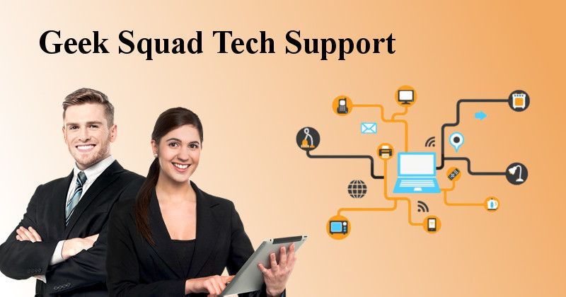 Geek Squad Tech Support Prices