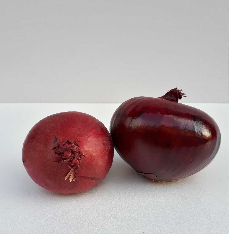 Uien (rood)