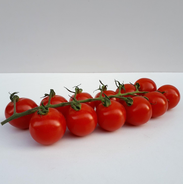 Tomaten (klein)