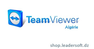 TeamViewer Licence Corporate