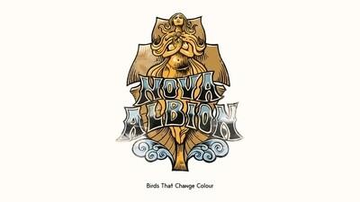 Birds That Change Colour - Nova Albion - LP - PreOrder