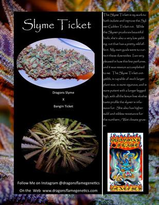 Dragons Flame Genetics Slyme Ticket
