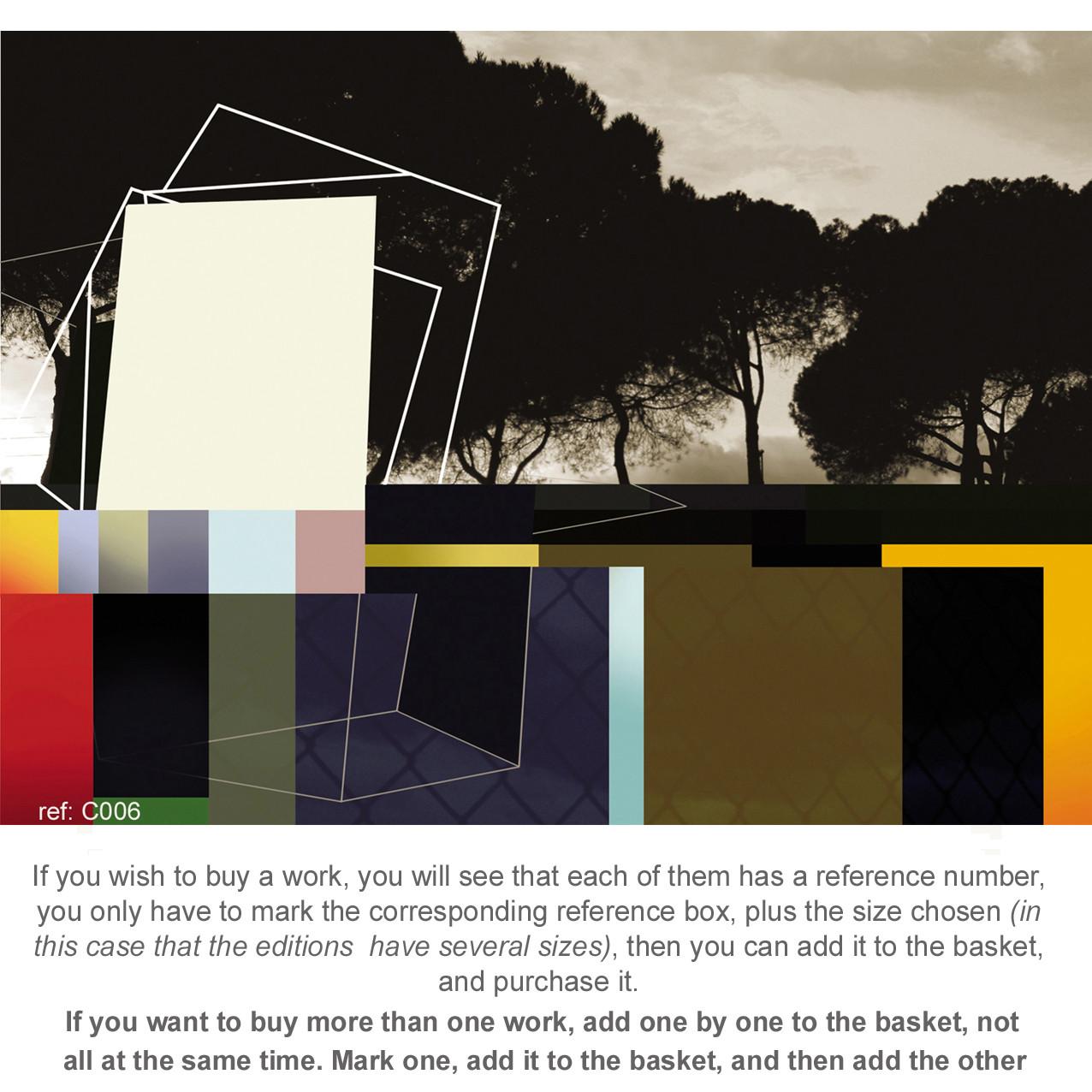 LANDSCAPES 2010 (prints)