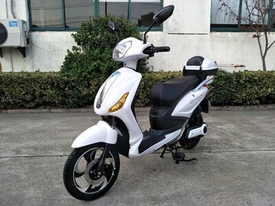 MOTO MOTOCICLETTA BICICLETTA SCOOTER E-BIKE E-SCOOTER ELETTRICO PER ADULTI City All 48V20AH 250w