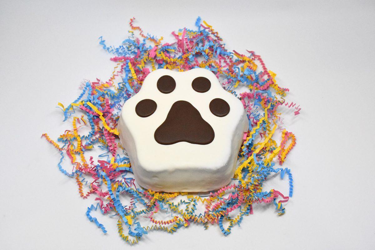 Paw Cake 00039