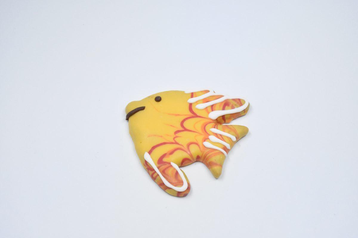 Large Fish 00061