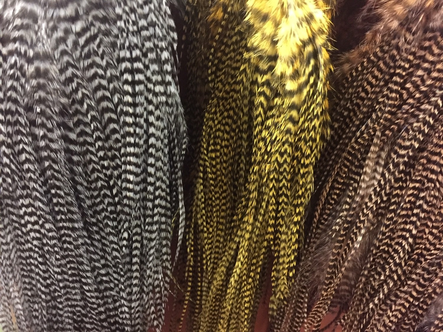 Dyed Grizzly Dry Fly Hackle