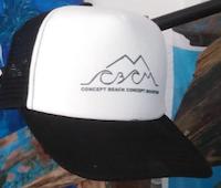 Baseball Hat Logo