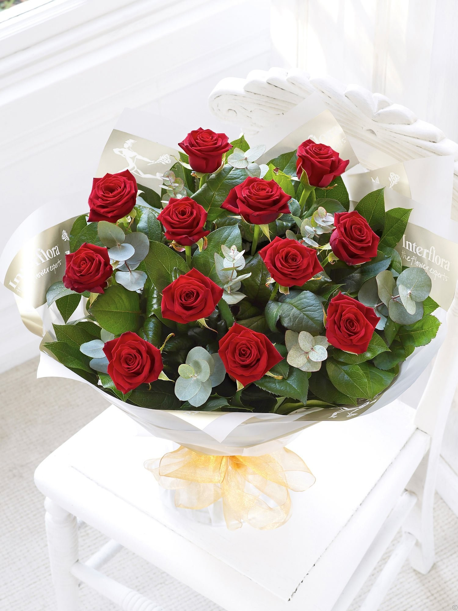 Red Hot Roses 00040