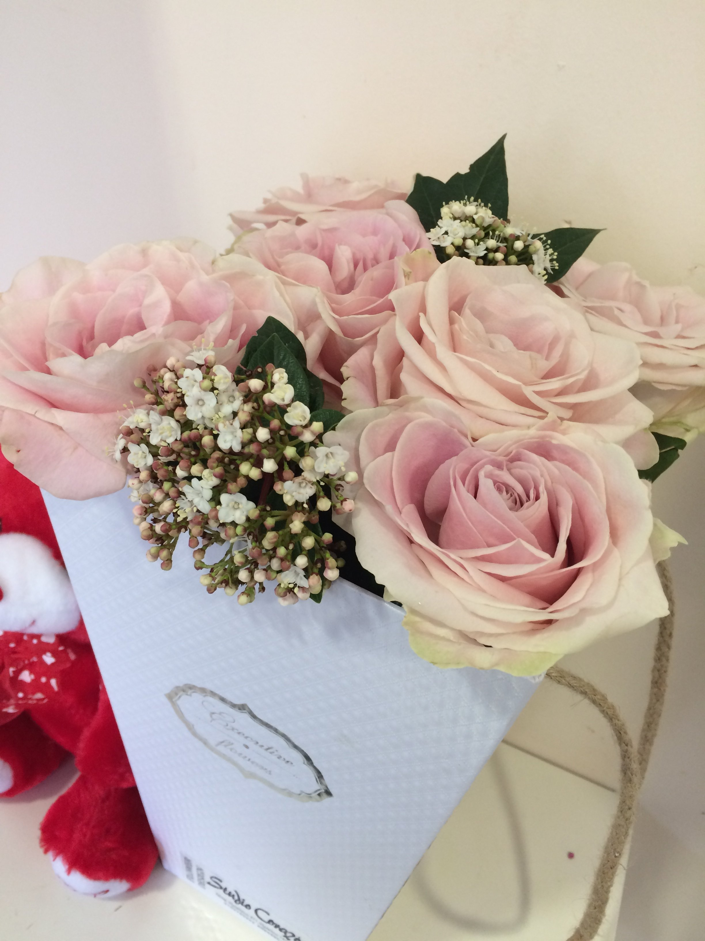 Adore Avalanche Roses