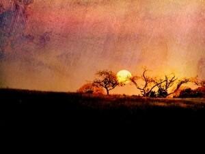 John Gamache - Fiery Sunset