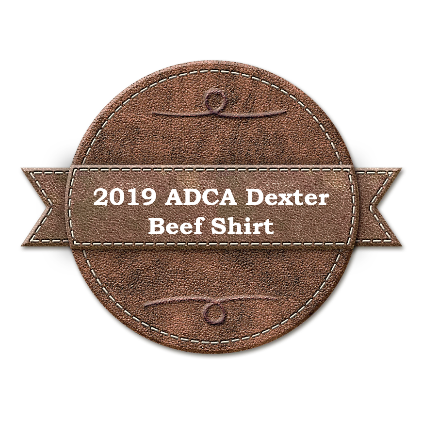 2019 ADCA AGM T-Shirt