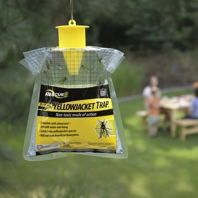 Pheromone Wasp & Yellowjacket Trap