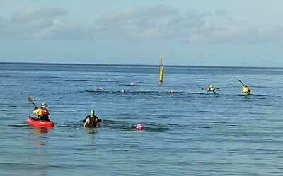 Open water swimming pass (single session)