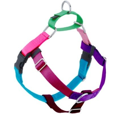 2 HOUNDS FREEDOM NO PULL HARNESS AND LEASH LARGE JELLY BEAN