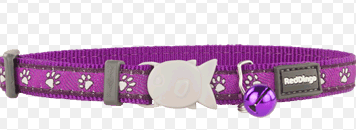 Red Dingo Cat Collar Desert Paws Purple 12 Mm