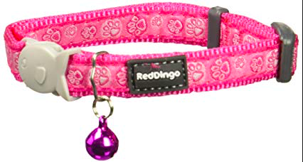 Red Dingo Cat Collar Paw Impressions Hot Pink