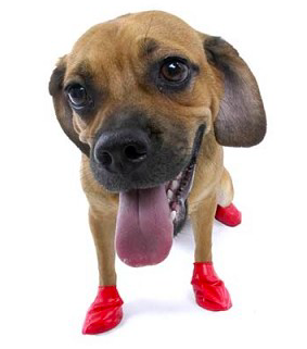 PAWZ RUBBER DOG BOOTS  SMALL RED 12 CT