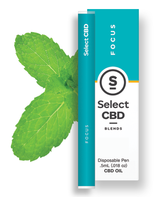 Select  Inhaler - Spearmint