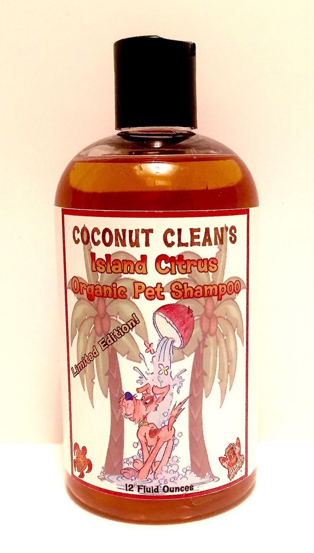 Coconut Clean's Island Citrus Shampoo