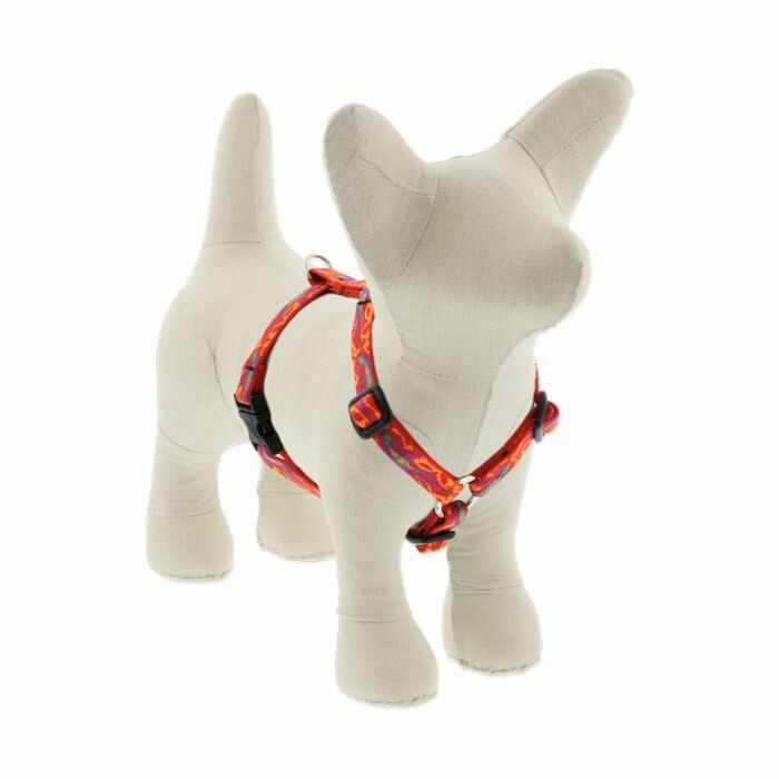 Lupine Roman Harness Go Go Geko