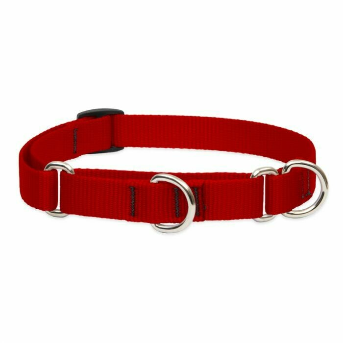 """Lupine Basic 1"""" Martingale Collar 19-27"""" Red"""