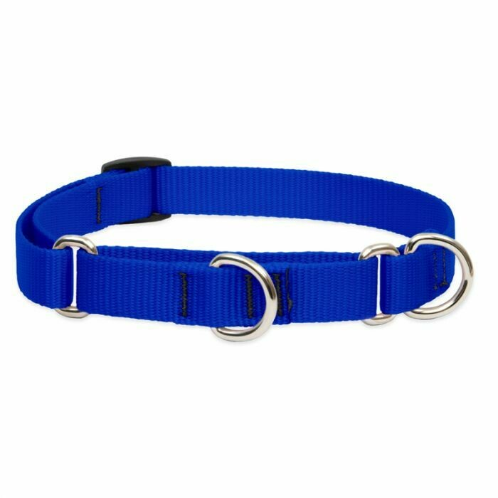 "Lupine Basic 3/4"" Martingale Collar 14-20"" Blue"