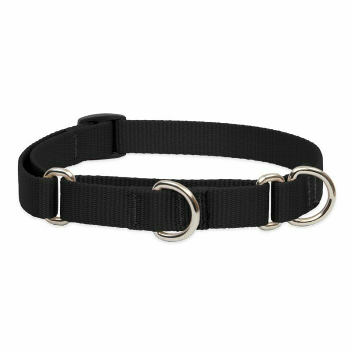 "Lupine Basic 1"" Martingale Collar 19-27"" Black"